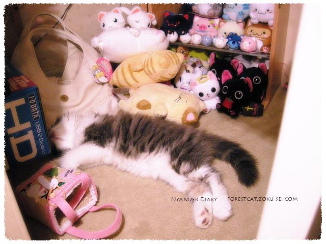 ぬいぐるみと同化する猫
